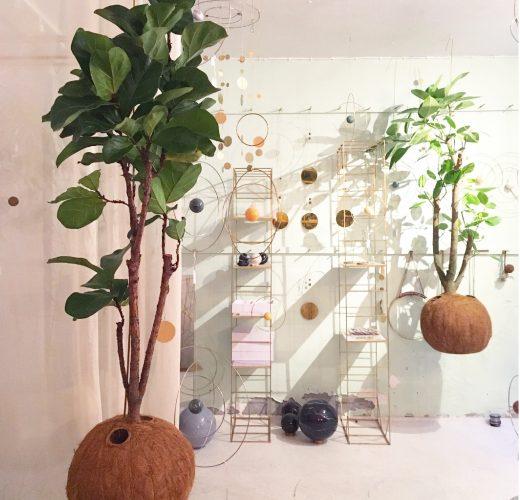 mega-tree-lyrata-planteplaneter-kajaskytte-mega1