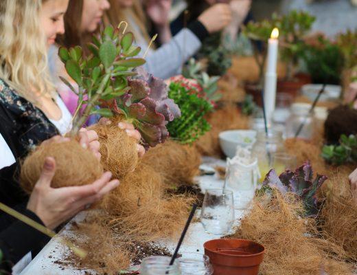 planteplaneter-workshop-kajaskytte-kokadama