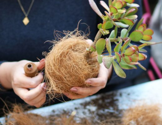 diy-planteplaneter-handmade-kajaskytte